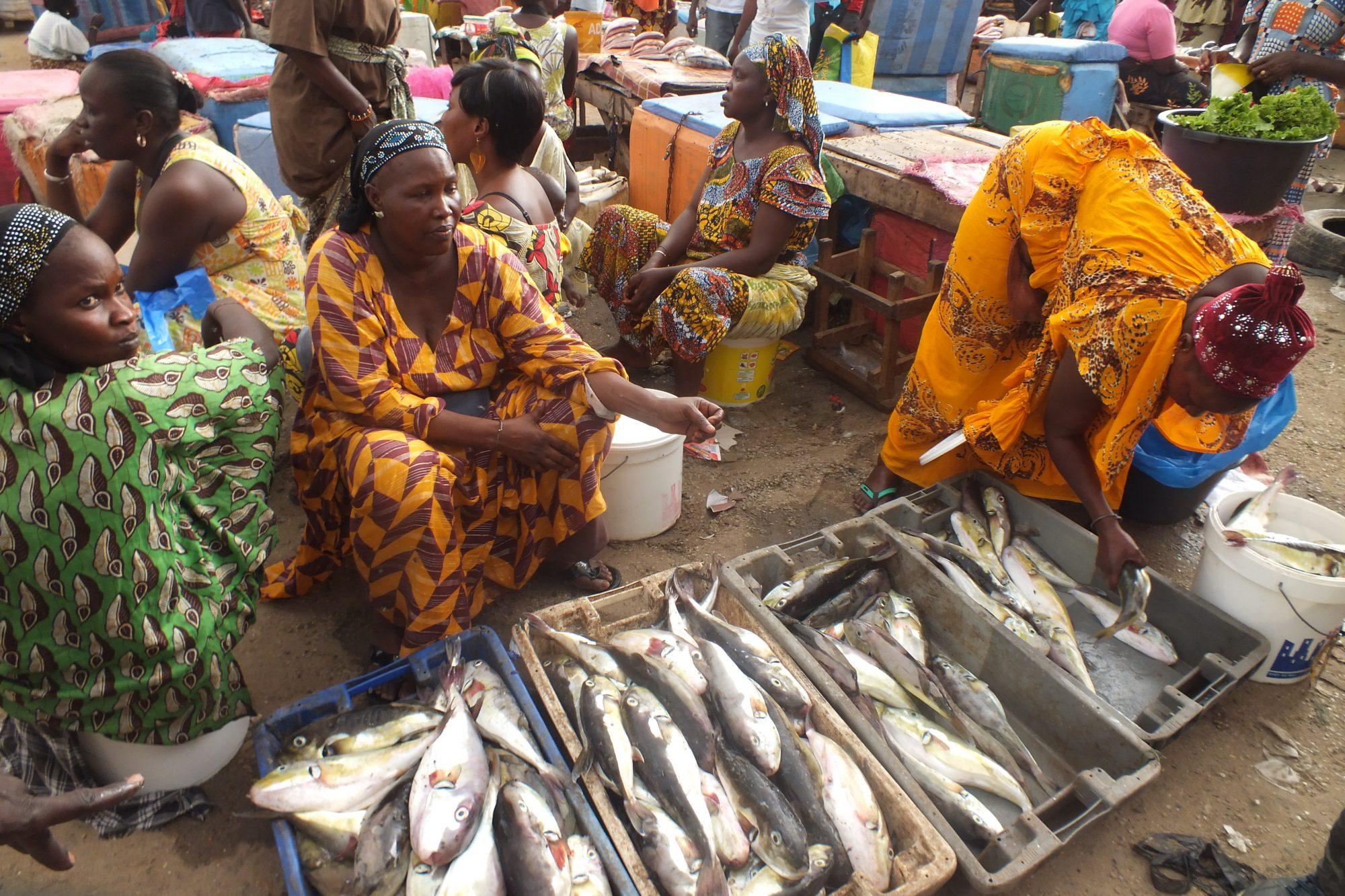 """Die """"Blaue"""" Wachstumsstrategie der Afrikanischen Union und die Sorgen der Kleinfischerei – September 2020"""