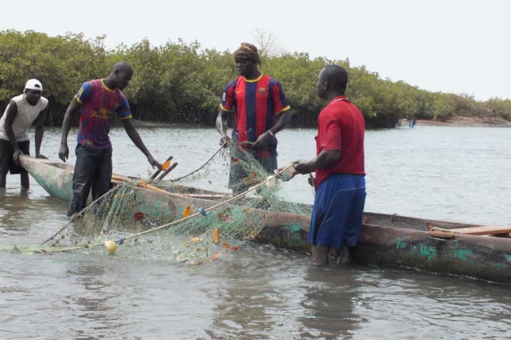 Auswirkungen des Klimawandels auf die Kleinfischerei in Westafrika – Ein Interview – Nov. 2020